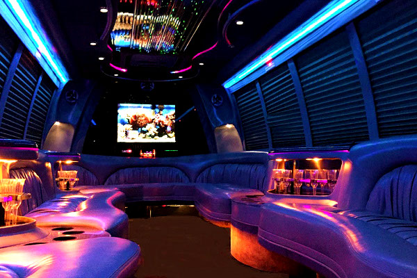 Stockton 18 Passenger Party Bus